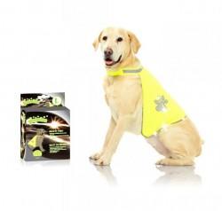 Pawise - 12003 Pawise Safety Vest Köpek Yeleği L