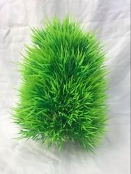 Fatih-Pet - 41494 Plastik Bitki Tombul 20cm