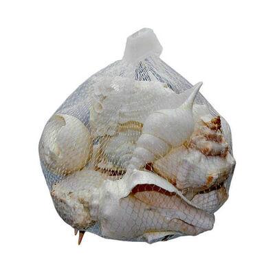Beyaz Deniz Kabuğu File Mix 230g