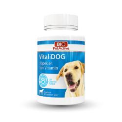 BioPetActive - BioPetActive VitaliDOG Köpekler için Multivitamin 75g (150 Çiğneme Tableti)