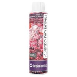 Reeflowers - Coralline Algae Accelerator - Quick Response 250 ml
