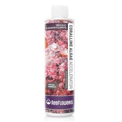 Reeflowers - Coralline Algae Accelerator - Quick Response 500 ml