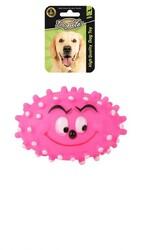 DogLife - DOGLIFE Köpekler için Plastik Barbed Face Oyuncak