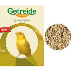 Getreide - Getreide Kanarya Yemi (Aspur) 20 Kg