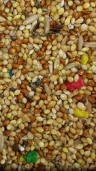 Getreide - Karışık Muhabbet Yemi Kağıt Çuval 20 kg
