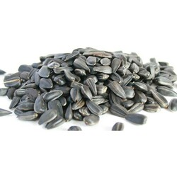 Getreide - Getreide Siyah Çekirdek Papağan Yemi 20 Kg