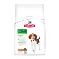Hills - Hills Puppy -1 Healty Development Lamb Rice Yavru Köpek Maması 3 Kg
