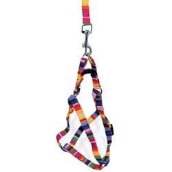 Royalist - Kedi&Köpek Örme Göğüs Takım Tasması Rainbow 10mmX48X120 cm