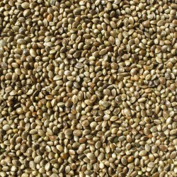 Fatih-Pet - Kenevir 1 Kg