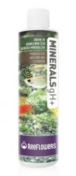 Reeflowers - Minerals gH+ 85 ml.