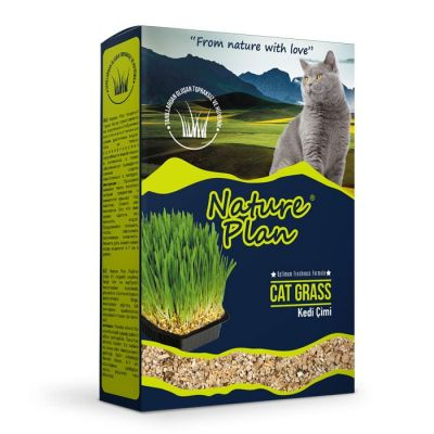 Nature Plan Premium Kedi Çimi 500 ml