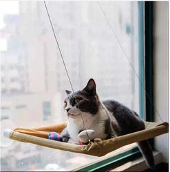 Fatih-Pet - Petzoom Pencereye Monte Kedi Yatağı