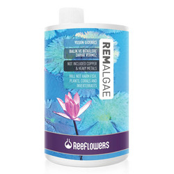 Reeflowers - RemAlgae - Yosun Giderici 1000 ml