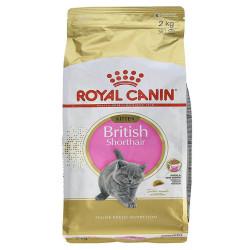 Royal Canin - Royal Canin Kitten British Shorthair Yavru Kedi Maması 2 Kg