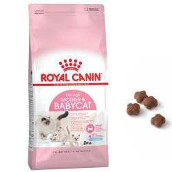 Royal Canin - Royal Canin Mother&Baby Cat Hamile ve Emziren Kedi Maması 10 Kg