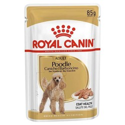 Royal Canin - Royal Canin Poodle Yetişkin Pouch Yaş Köpek Maması 85 Gr