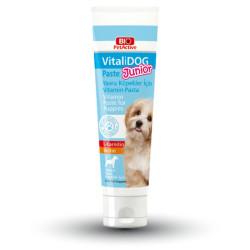 BioPetActive - VitaliDOG Paste Junior - Yavru Köpekler İçin Vitamin Macunu 100 ml