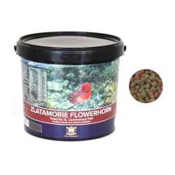 Zlatamorie - ZLATAMORIE FLOWERHORN 3 Kg